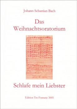 Bach, Johann Sebastian - Schlafe, mein Liebster (Weihnachtsoratorium) - Blockflöten Quartett SATB