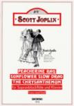 Joplin, Scott - Peacherine Rag -  u.a.  Sopranblockflöte und Klavier